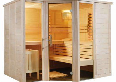 sauna arktis plus infra006
