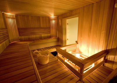 sauna diseño Alexandra